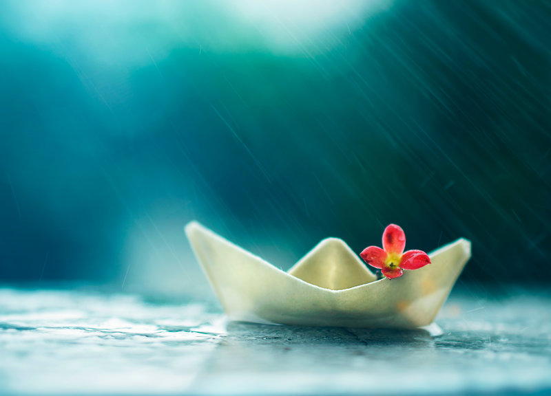 collecting rain water